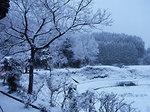 03.15-snow-day.jpg